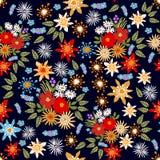 五颜六色的花卉地毯 免版税库存图片