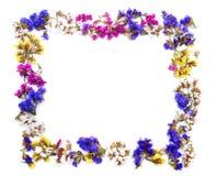 五颜六色的花卉框架空间 免版税图库摄影