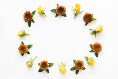 五颜六色的花卉框架 库存图片