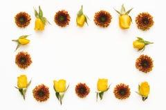 五颜六色的花卉框架 图库摄影