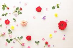 五颜六色的花卉模式 免版税库存照片