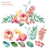 五颜六色的花卉集合 与叶子和玫瑰,画的水彩的五颜六色的白紫色花卉收藏 图库摄影