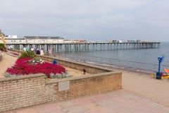 五颜六色的花和假日游客Teignmouth码头和海滩德文郡英国英国 免版税库存图片
