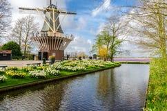 五颜六色的花和开花在是世界` s最大的花园的荷兰春天庭院Keuenkhof里 免版税库存照片