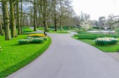五颜六色的花和开花在荷兰春天庭院Keukenhof里 图库摄影