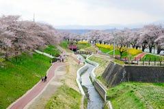 五颜六色的花和樱桃树在沿城石河岸的公园在宫城, Tohoku,日本在春天 图库摄影