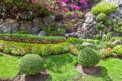 五颜六色的花圃和绕草路 免版税库存照片