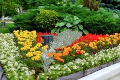 五颜六色的花圃风景看法和绕草草坪路在一个有吸引力的规则式园林里 免版税库存照片