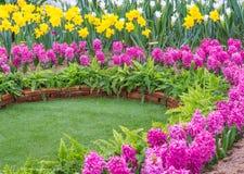 五颜六色的花在公园 一些反弹严格晴朗那里不是的蓝色云彩日由于域重点充分的绿色横向小的移动工厂显示天空是麦子白色风 免版税图库摄影