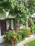 五颜六色的花对有窗口的墙壁 图库摄影