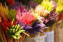 五颜六色的花市场在清迈,在泰国 免版税库存照片
