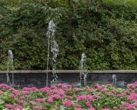 五颜六色的花床和喷泉在达拉斯树木园和植物园 免版税图库摄影