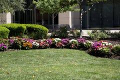 五颜六色的花床在城市庭院圣路易斯MO美国里 免版税库存照片