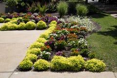五颜六色的花床在城市庭院圣路易斯MO美国里 免版税图库摄影