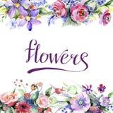 五颜六色的花束 花卉植物的花 框架边界装饰品正方形 免版税库存照片