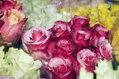 五颜六色的花构成许多玫瑰 库存图片
