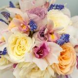 五颜六色的花构成 免版税库存图片