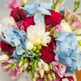 五颜六色的花构成 库存照片