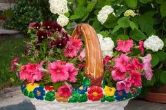 五颜六色的花架喇叭花 图库摄影