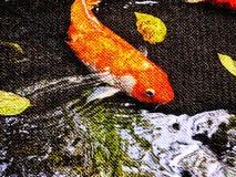五颜六色的花梢鲤鱼鱼两次曝光, 免版税图库摄影