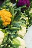五颜六色的花椰菜 库存图片