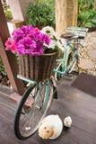 五颜六色的花篮子自行车 库存图片