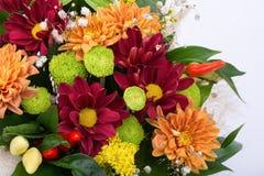 五颜六色的花美丽的花束在白色背景的 库存图片
