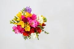 五颜六色的花花束在白色的春天的和夏天休假和明信片 顶视图 免版税库存照片