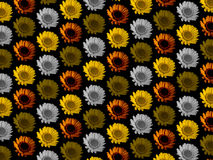 五颜六色的花重复背景 免版税库存照片