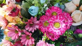 五颜六色的花 免版税库存图片