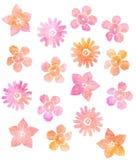 五颜六色的花 库存例证