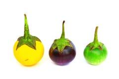 五颜六色的茄子 免版税图库摄影