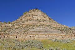 五颜六色的荒地小山在春天 免版税图库摄影