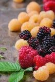 五颜六色的莓堆  免版税库存图片