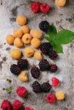 五颜六色的莓堆  免版税库存照片