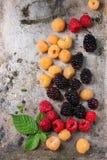 五颜六色的莓堆  免版税图库摄影