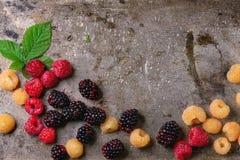 五颜六色的莓堆  库存照片
