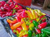 五颜六色的菜在农夫的市场上 免版税库存照片