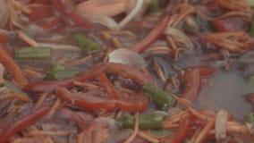 五颜六色的菜的亚洲混合在煮沸被炖液体调味汁 影视素材
