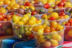 五颜六色的蕃茄 免版税库存照片