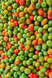 五颜六色的蕃茄 库存照片