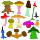 五颜六色的蘑菇是不同的在形状和类型 免版税库存照片