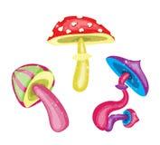 五颜六色的蘑菇 免版税库存照片