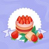 五颜六色的蛋糕甜美丽的点心可口食物 库存例证