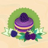五颜六色的蛋糕甜美丽的点心可口食物 向量例证