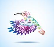 五颜六色的蜂鸟 免版税库存照片
