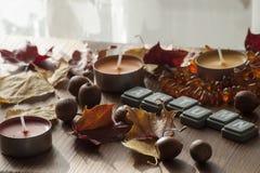 五颜六色的蜡烛和北赤栎和琥珀色的项链干燥秋叶和橡子  免版税库存图片