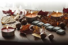 五颜六色的蜡烛和北赤栎和琥珀色的项链干燥秋叶和橡子  库存图片