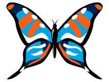 五颜六色的蝴蝶 图库摄影