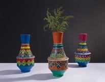 五颜六色的被手工造的瓦器花瓶和绿色分支与苛刻的阴影 库存图片